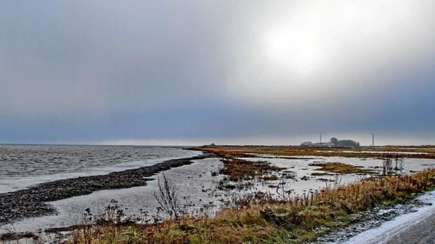 Der er lagt op til en sand folkefest, når Øland-Gjøl dæmningens fødselsdag fejres 15. juni. Foto: Jesper Hansen