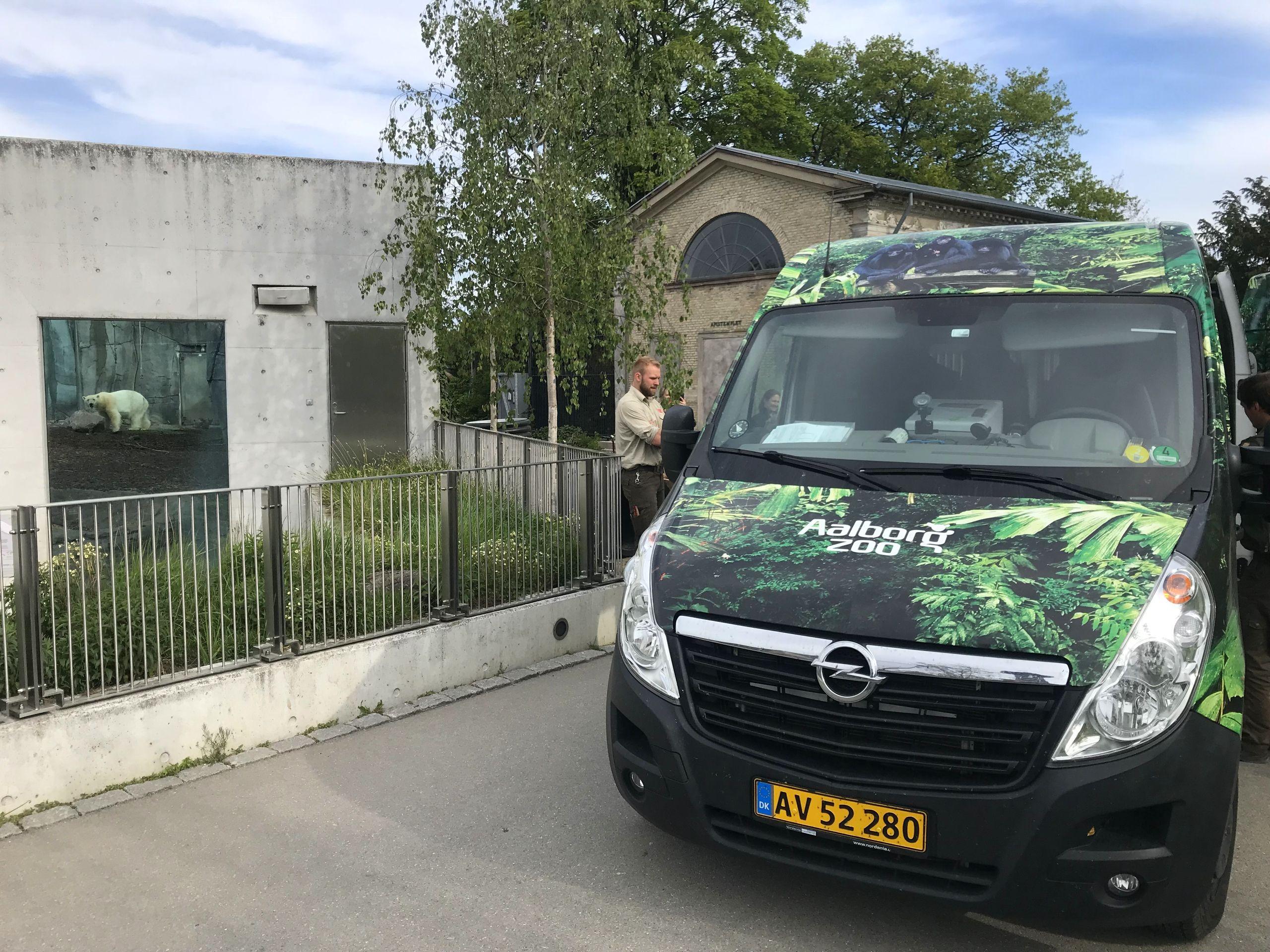 Kursen er sat mod Aalborg, hvor Nord gerne skal sikre arvefølgen. Foto: København Zoo