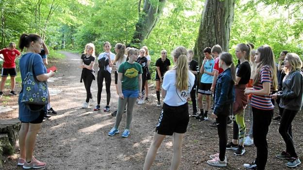 Der var også forskellige opgaver i skoven omkring Det gamle Stadion. Foto: Jørgen Ingvardsen Jørgen Ingvardsen