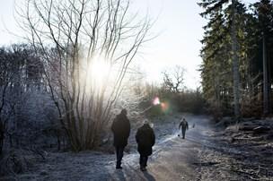 Frostklar weekend bringer sol og lyse dagtimer