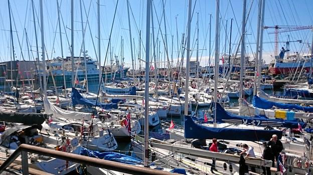 Skagen Race passer for både erfarne sejlere og for familie-/vennemandskaber som vil prøve sin første havsejlads.