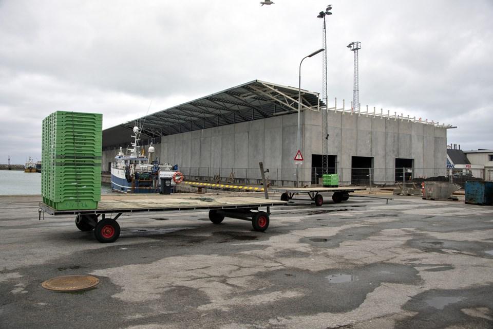 Hirtshals Havn bygger ny kassevaskeri til fiskeriforeningen. Foto: Kurt Bering