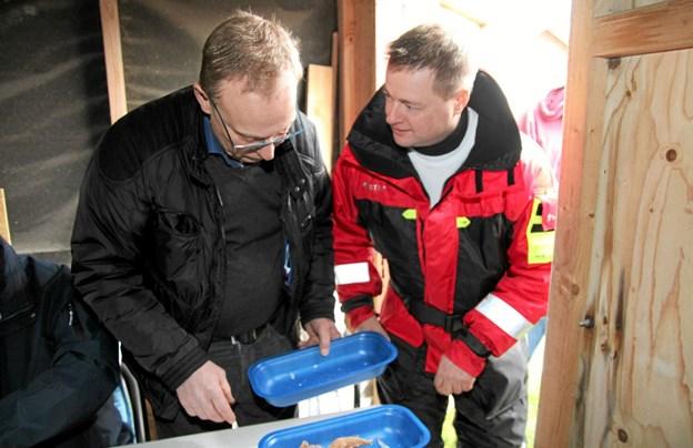 Tidligere borgmester Ole Lykkegaard Andersen for lige en historie fra dagens fangst. Flemming Dahl Jensen