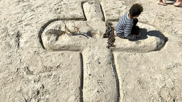 Sand-vandflyver. Foto: Bodil Dam. Bodil Dam.