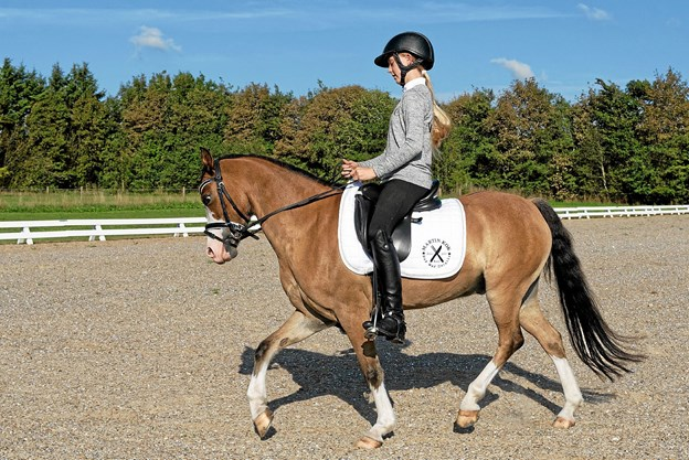 Mira Maja Frandsen er 13 år og rider på Kongsgodsgårds Avatar, en kategori 3 pony på 7 år. ?Foto: Niels Helver