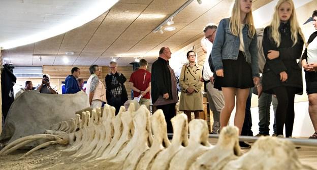 Øget markedsføring for at få turister vil også gavne besøget hos Nordsøen Oceanarium, herunder i Hvalforskerhytten. Arkivfoto: Bent Bach