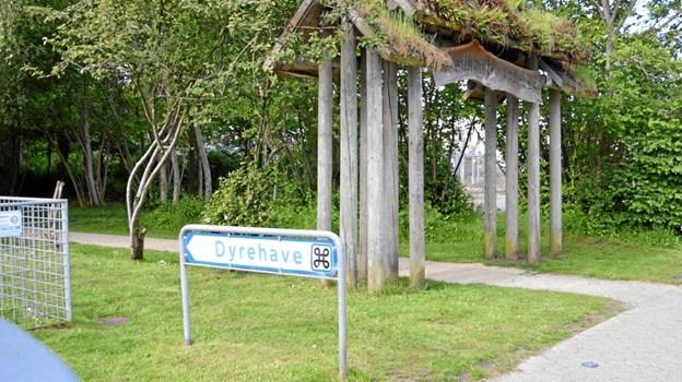 Hadsund Dyrehave ligger ved Ringvejen på et areal på 7 tdr. land mellem industrikvarteret og udkanten af byen, og med Hadsund Egnssamling og Møllehistorisk Samling som nabo.  Foto: hhr-freelance.dk