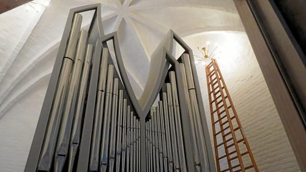Det nye orgel rækker op under hvælvingen i tårnrummet. Foto: Kirsten Olsen Kirsten Olsen