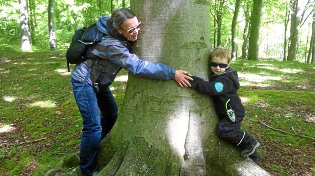 Skovene er også rige på friluftsliv