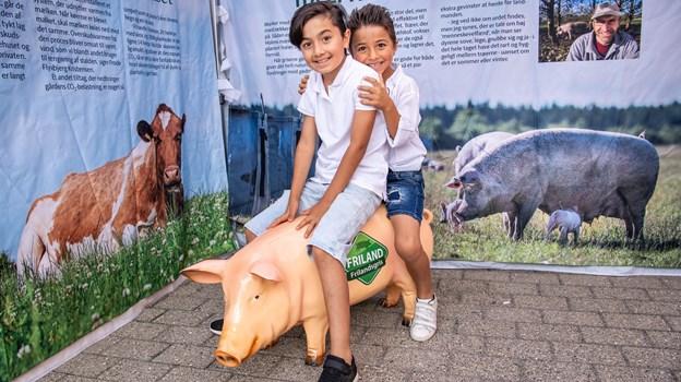 En glad gris, man kan ride på, var et hit hos et par drenge. Peter Broen