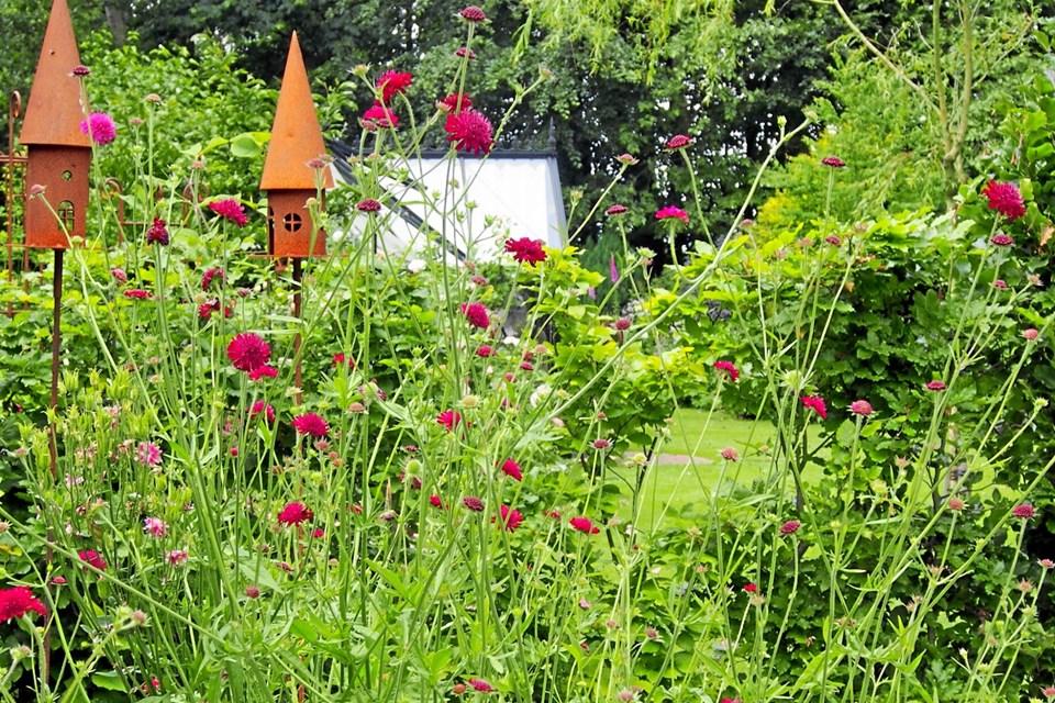 Der vil være masser af have-inspiration at hente, når havekredsen i Mariagerfjord 15. juni drager af sted på årets sommertur. Privatfoto