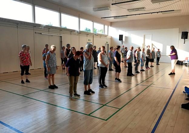 Danserne i Vilsted Linedans har fundet danseskoene frem igen. Privatfoto