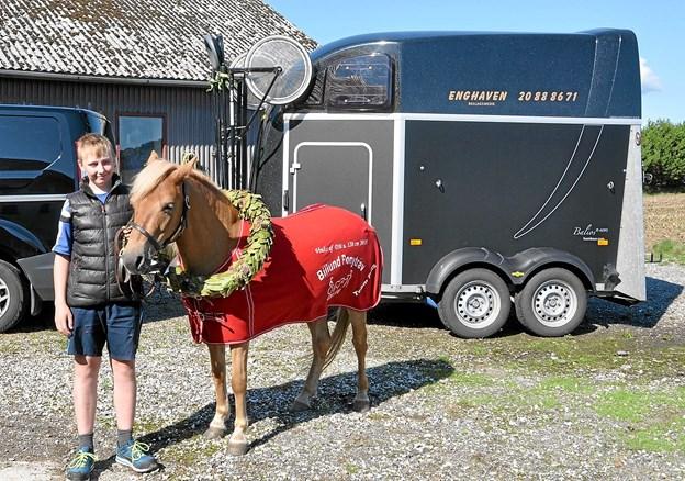 Her er Fudge med laurbærkransen omkring halsen og det hestedækken fra Billund, som de fik, da de vandt DM. Bag Fudge er den hestetrailer, som de bruger, når de kører rundt til stævner. Som man kan se, så er der spændt en sulky fast på forenden af traileren. Foto: Ole Torp