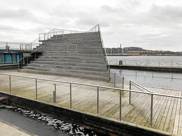 Rotter og medlemmer af Vinterbadeklubben Lillebjørn er pt. de eneste, der har fornøjelse af Aalborg Havnebad. Arkivfoto: Torben O. Andersen
