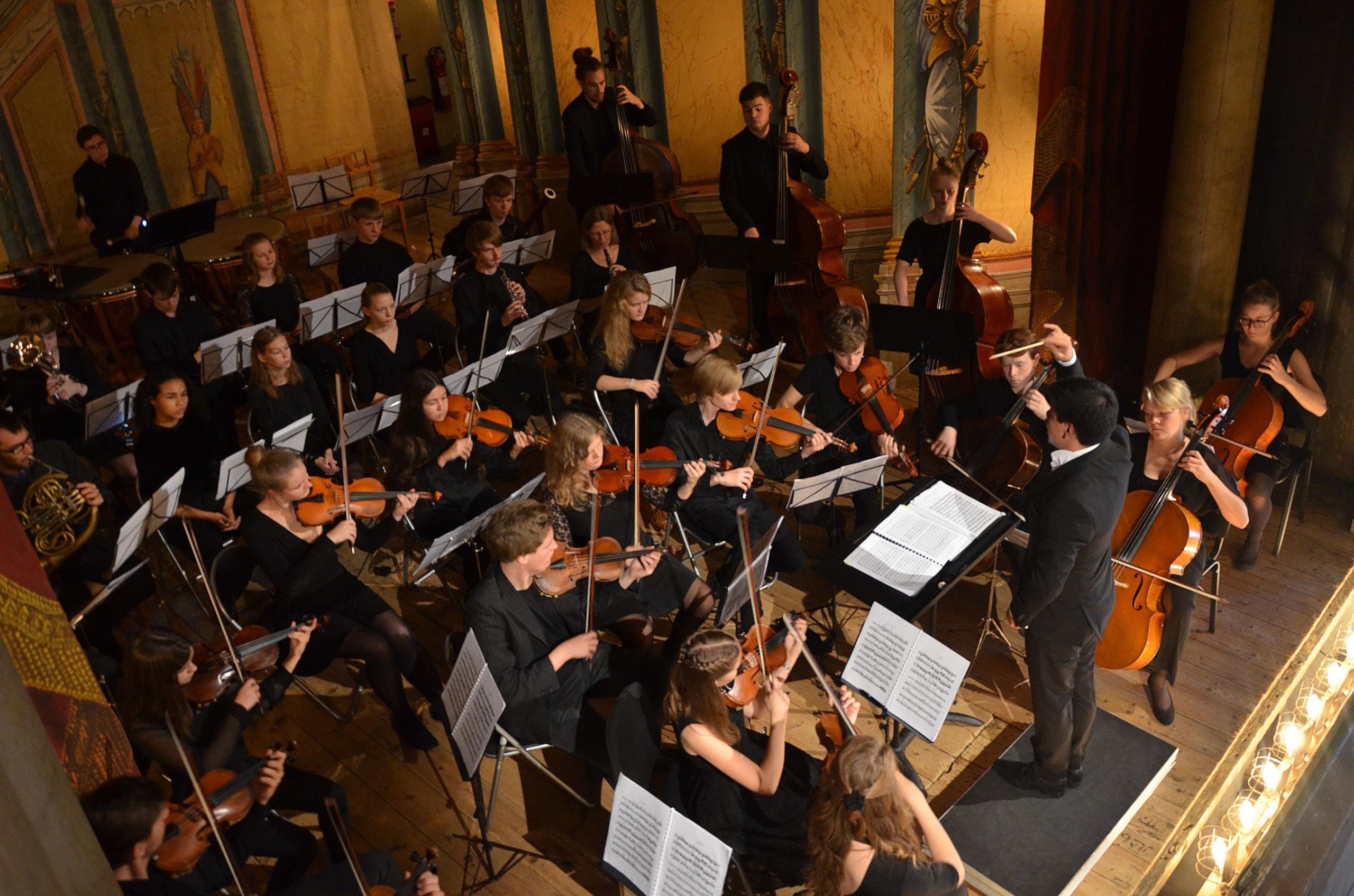 Orkestret spiller fire koncerter om året - bl.a. på mandag 4. februar. Foto: Aalborg Kulturskole