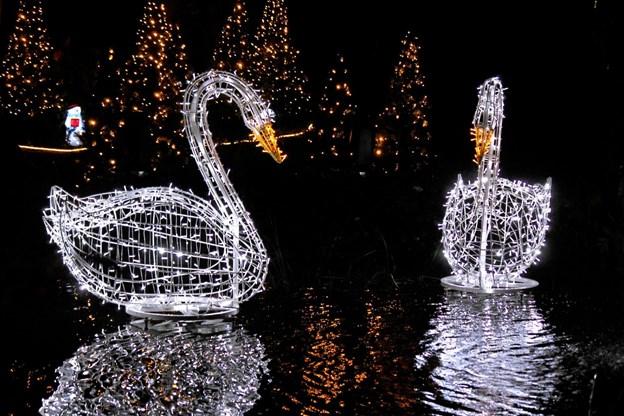 1. november fejres åbningen af Magisk Jul i Blokhus. Foto: Flemming Dahl Jensen Flemming Dahl Jensen