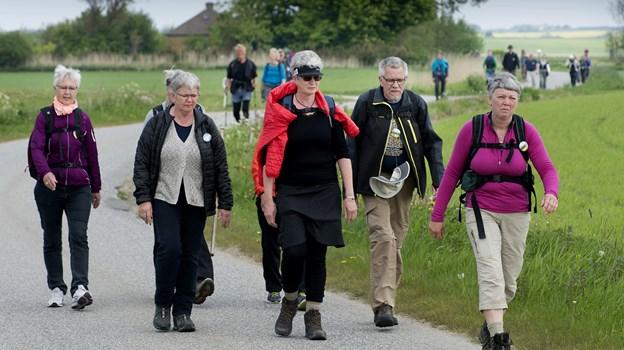 Der er pilgrimsvandring på lørdag, Arkivfoto: Peter Mørk