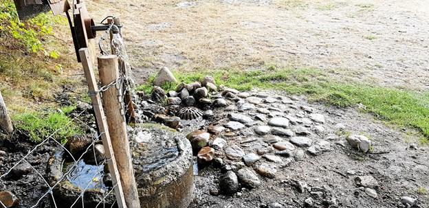 """""""Mimers Brønd"""" ved Sildehagen i Hobro blev i weekenden forskønnet med en stenpikning. Privatfoto"""