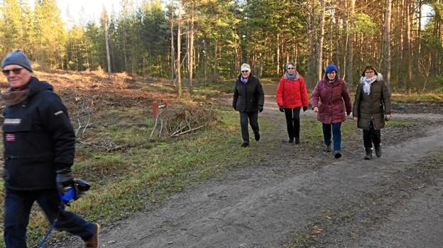 Nytårsmarchen i Skagen starter den 1. januar kl. 13.30.Arkivfoto