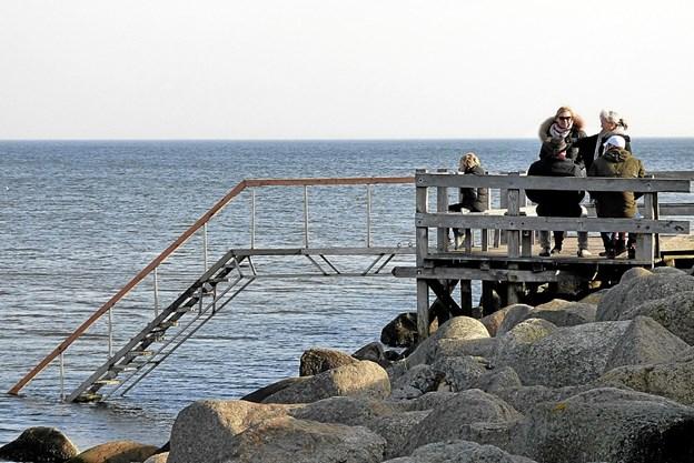 Vinterbaderne i Øster Hurup kan igen komme sikkert ned i det kolde vand via en ny ståltrappe, der afløser trætrappen, som højde bølger gjorde det af med. Foto: Ejlif Rasmussen