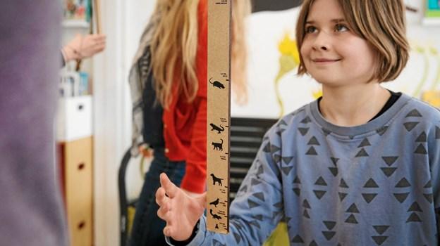 Eleverne får mulighed for at gøre sig sanselige og faglige erfaringer. Foto: Presse