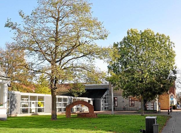 Der er stadigvæk et par gamle og flotte træer tilbage på pladsen. - Pas på dem, siger Grete Munch. Foto: Ole Torp Ole Torp