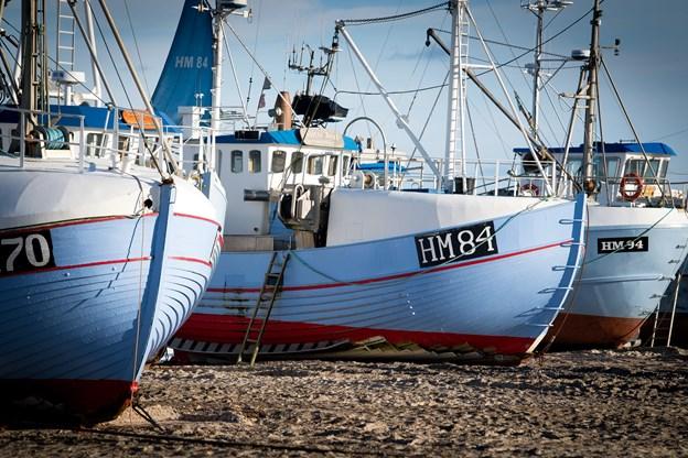 TV-programmet om kystfiskerne er god reklame for Jammerbugt og erhvervet. Arkivfoto: Bo Lehm