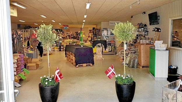 Der var pyntet smukt op med grønne planter og dannebrogsflag i dagens anledning. Foto: Hans B. Henriksen Hans B. Henriksen