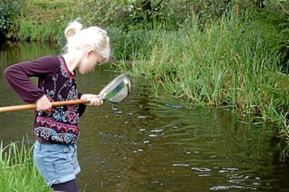 Børn kunne selv undersøge dyre- og plantelivet i åløbet ved Skillingbro Naturskole. Privatfoto