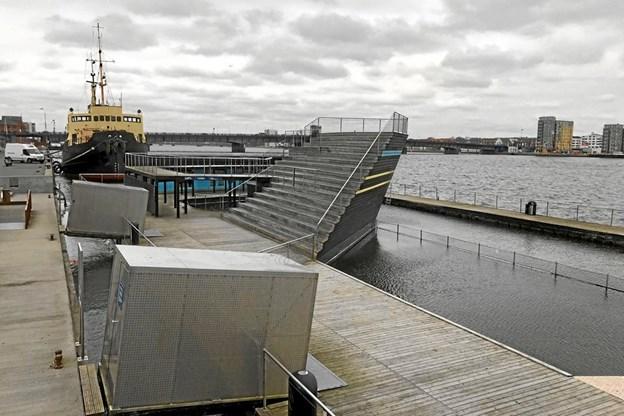 Rotterne har haft kronede dage i Aalborg Havnebad med den konsekvens, at badegæsterne blev udelukket fra anlægget. Arkivfoto: Torben O. Andersen