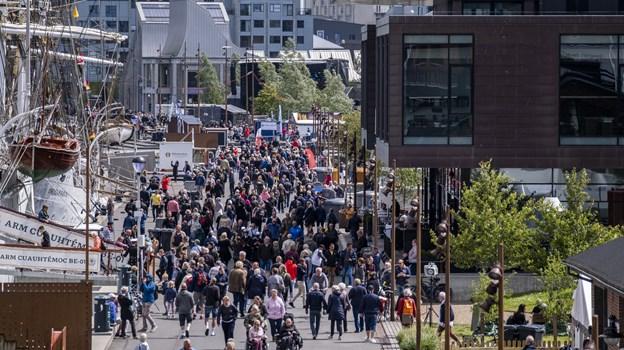 The Tall Ships Races 2019 er i fuld gang i Aalborg. Foto: Lasse Sand