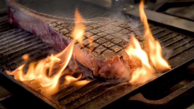 Prisen for en i forvejen dyr grill kan nemlig variere med flere tusinde kroner for det samme produkt. Arkivfoto: Lars Pauli