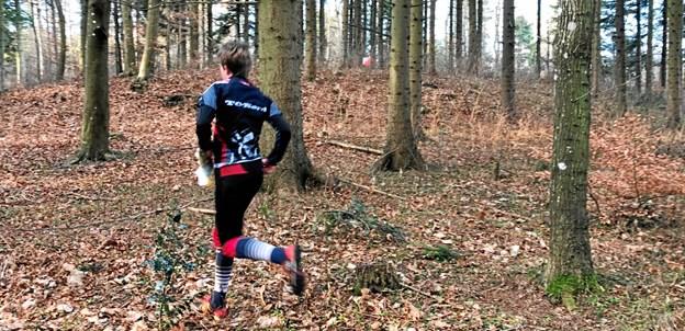 Fire løb, fire onsdage i fire byers skove - her fra et tidligere løb. ?Foto: Keld Østergaard