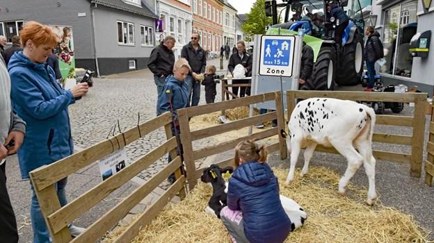 Dyrskuet var på gaden for at reklamere for det store landbrugs-show på lørdag 8. juni. Foto: Ole Iversen Ole Iversen