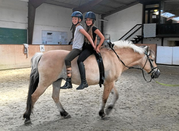 Også Marienborg og Omegns Rideklub ved Arden har været med for første gang- og tilbudt et par dages hestehygge.    Privatfoto