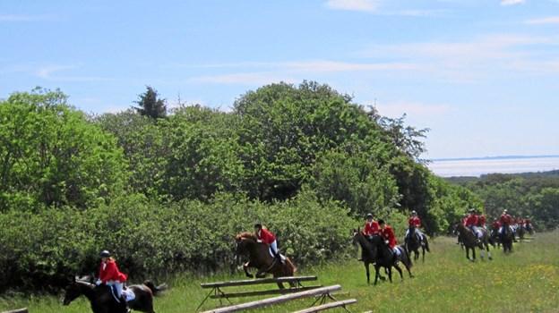 Ikke alle heste kom over forhindringerne i første forsøg.