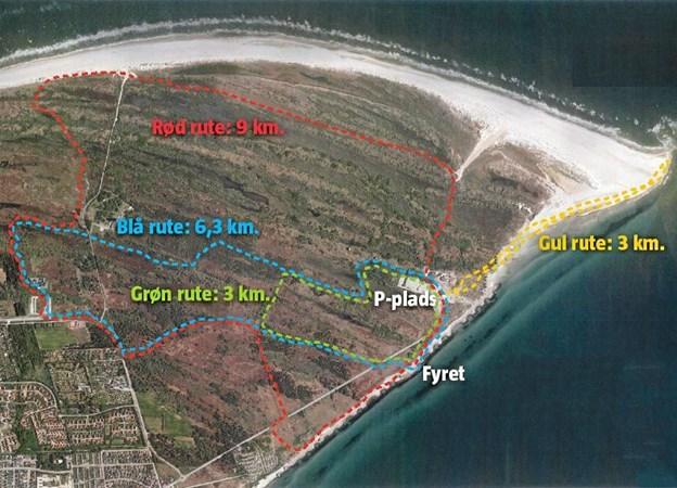 Grenen Sporet er en af de spændende vandretuter, vi har i kommunen.