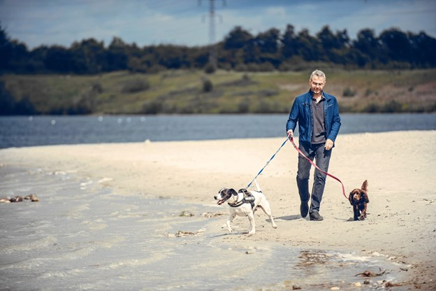 Fra 1. april skal hunden være i snor på en række danske strande. Foto: Dyrenes Beskyttelse