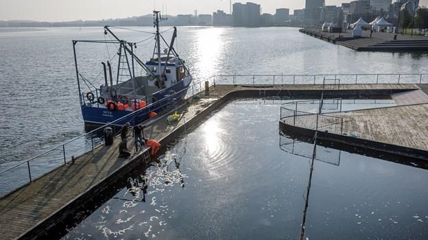Vejrguderne var med medarbejderne fra Hvalpsund Net i Hvalpsund, da de gik i gang med det krævende arbejde i Aalborg Havnebad.