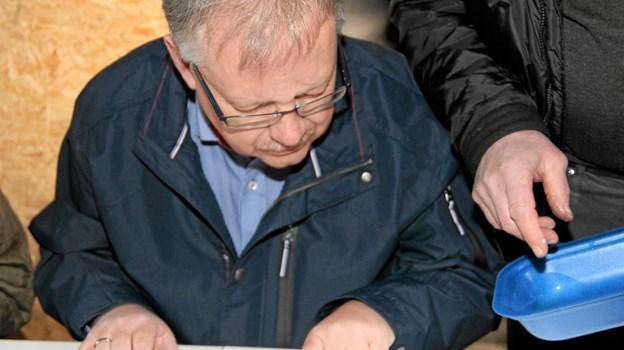 Sildens længde måles meget nøjagtigt af borgmester Mogens Chr. Gade. Flemming Dahl Jensen