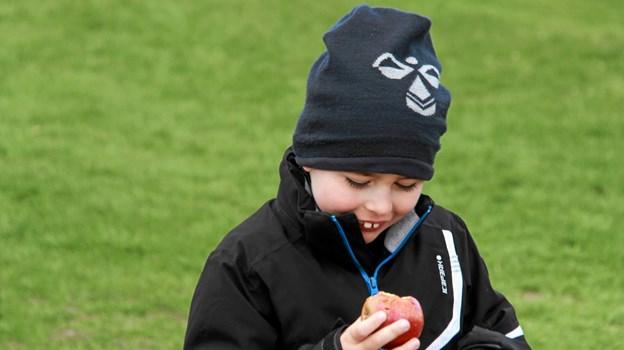 Det er nu ikke så dårligt med et æble synes den lille fyr at tænke. Foto: Hans B. Henriksen Hans B. Henriksen