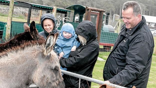 Familien Jensen fra Tornby fodrede æslerne. Foto: Peter Jørgensen