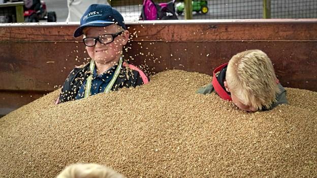 Børnene kunne gå på jagt efter karameller i kornet. Bagefter kunne man jo så lade de andre børn dække en til i det tørre korn. Foto: Ole Iversen Ole Iversen