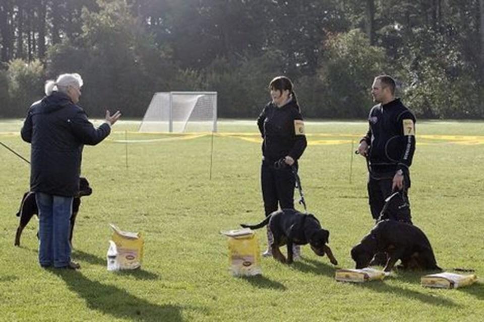 Der var foderpræmier til de bedste hunde i klasserne.Foto: Henrik Louis