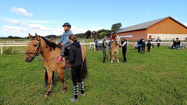 Hestene og rytterne gør klar til at komme i gang med dagens træning på banerne ved Dronninglund Rideklub. Foto: Jørgen Ingvardsen Jørgen Ingvardsen