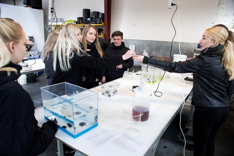 Forskningens Døgn er en landsdækkende videnskabsfestival, der finder sted hvert år i slutningen af april måned med over 700 events og foredrag i hele landet og mere end 70.000 besøgende.?Arkivfoto: Bo Lehm