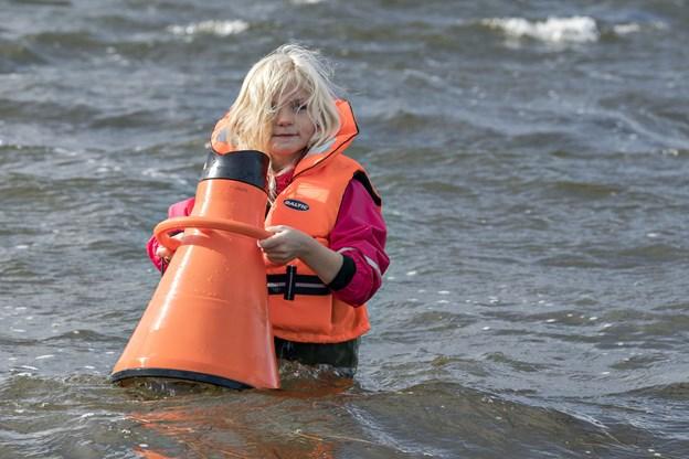 Ved Naturens Dag er det muligt at få et kig på livet under vandoverfladen.Arkivfoto