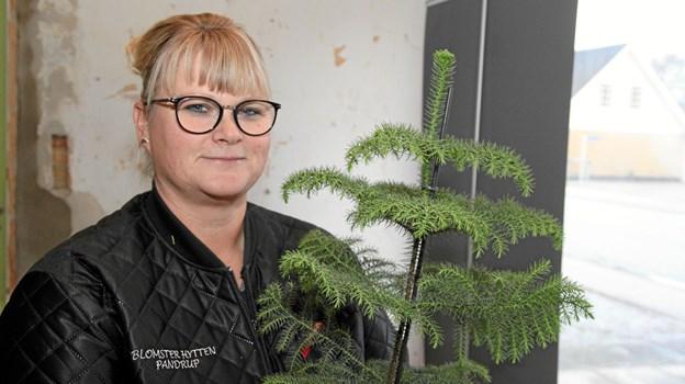 Hanne Beer Kok er i fuld gang med at forberede Blomsterhytten i lokalerne Bredgade 52 i Pandrup. Foto: Flemming Dahl Jensen