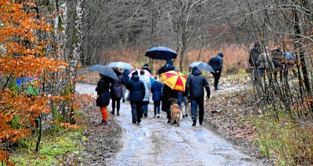 Kun en lille flok havde mod på en travetur i den regnvåde skov. Privatfoto