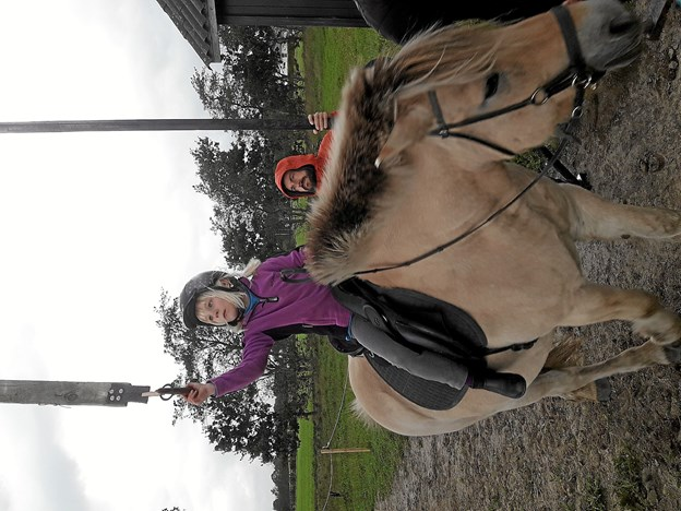 Flot samarbejde mellem hest og rytter. Foto: Privat